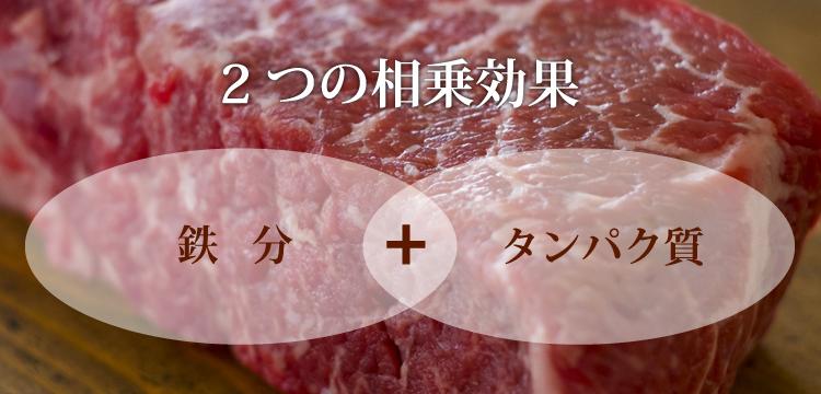 鉄+タンパク質